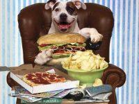 Tu es ce que tu manges…