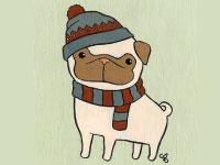 Protéger votre chien du froid l'hiver
