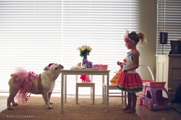 photographie enfant et bouledogue qui joue à la dinette - rebecca